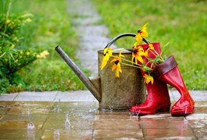 梅雨はインナードライが多発! その原因と対策ケア